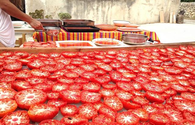 tomato and tomato in Zisolhouse