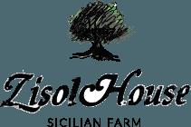 Zisolhouse Logo